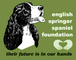 English Springer Spaniel Field Trial Association Foundation